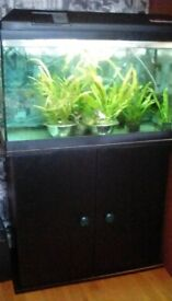 Fishtank with stand hood and lights 26x16x12