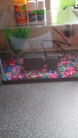 35 l fish tank comes with gravel plant and filter also fish food tap safe and amonia nitrate