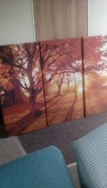 Autumn Gold Canvas Wall Prints
