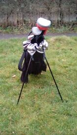 Callaway Big Bertha & Orlimar mixed golf club set with bag and stand