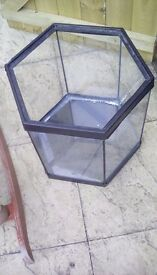 Medium Fish Tank £20 Offers Are Availabe