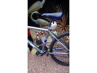 Cross 21 speed Mountain Bike