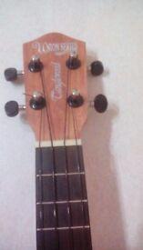 Tanglewood concert ukulele
