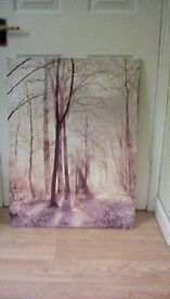 Lovely picture of trees on canvas board