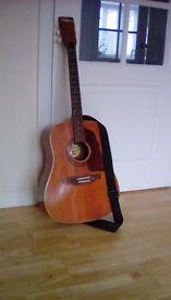 Shafesbury rodeo acustic guitar
