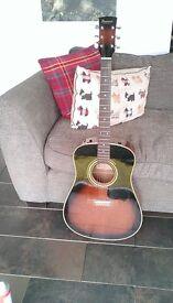 Ibanez PF20 Acoustic Guitar