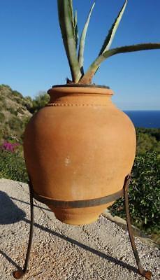 Garden Flower Vase Clay Vase Amphora Terracotta Vase Container Antique Look