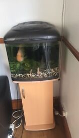 Small square shaped fish tank along with its stylish cabinet