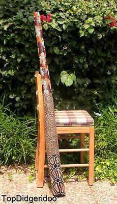 "51""130cm DIDGERIDOO+Bag+Beeswax Mouthpiece * Teak Wood LIZARD Artwork Dot-Paint"