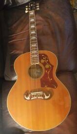Tokia Guitar J200