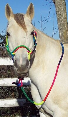 RAINBOW Cowboy Rope HALTER & LEAD ROPE *Nylon Horse Size
