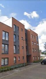 2 bedroom ground floor flat to swap