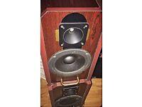Speakers 2x100w (used).