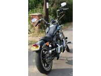 """Harley Davidson """"Skull Themed"""" Bobber Chop / Bar Hopper"""