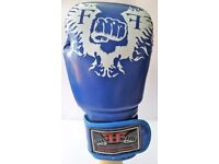 Furiousfistsuk Synthetic Leather 14oz Training Gloves Blue Color