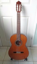 Paco Castillo 202 7/8 size Classical Guitar + Gator Hard Case - Made in Spain