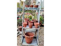 10 vintage terracotta plant pots 2