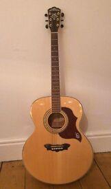 Washburn Cumberland Jumbo Guitar