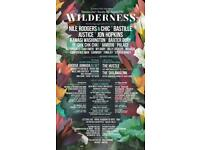 2 x adults and 2 x kids tickets bands for Wilderness Festival