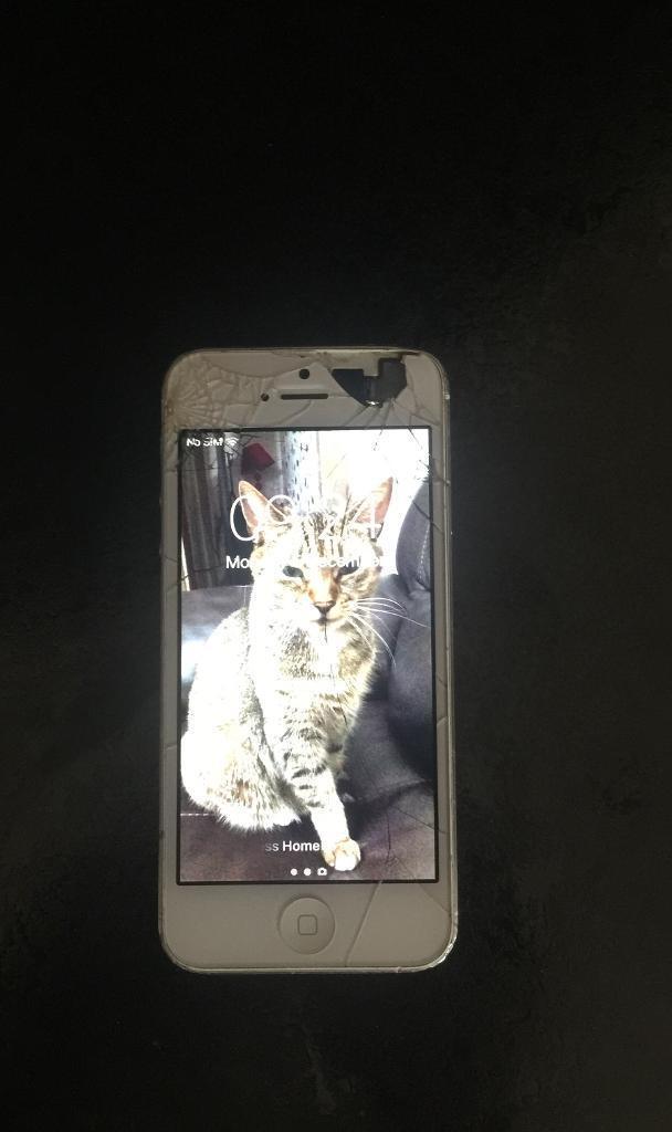 IPhone 5 16 gb Unlockedin Luton, BedfordshireGumtree - IPhone 5 16 gb unlocked broken screen phone work ok with broken screen with no problems bargain price
