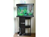Interpet Insight Glass Aquarium Fish Tank Premium Kit - 64 Litre with cabinet stand