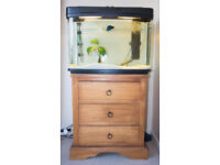 Curved glass fish tank with accessories and aquarium cabinet