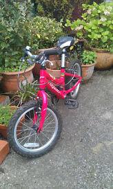 Girl's Trek bike