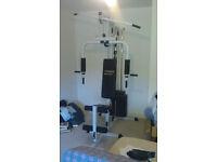Home Gym - Vitesse Multi Gym