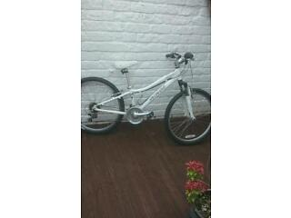 Girls specialised hot rock bicycle