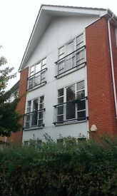 Bright 2 Double Bedroom Flat Great Central Location