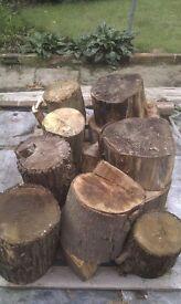 Unsplit hardwood logs firewood