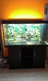 360 litre jewel aquarium