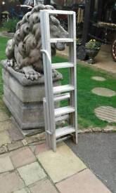Home loft ladders