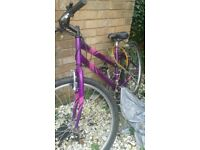 Apollo ladies mountain bike