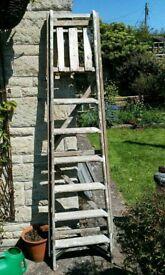 Seven tread wooden step ladder.