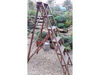 Vintage Hatherley Jones Lattistep 5 tread ladder