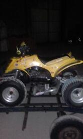 Race Quad 110cc 2stroke