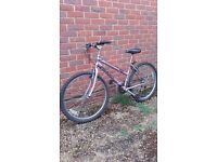 Mountain Bike for Young Person