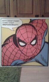 Spiderman canvas picture 3ft X 3ft