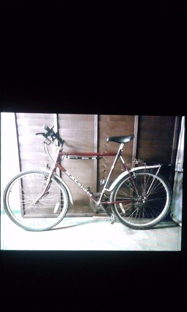 Gents raleigh bike