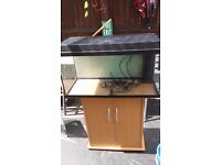 Two aquariums 800 or a small corner unit