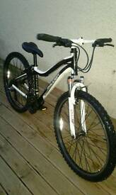 Raleigh Chinook kids mountain bike