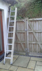 Youngman ladders 2.79m