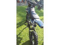 125cc orion pit bike