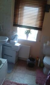 LARGE DOUBLE ROOM IN QUIET HOUSE - SUITABLE FOR PROFESSIONAL / CONTRACTOR
