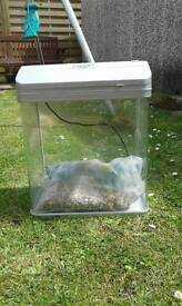 Small glass fishtank with lid