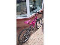 Girls 5 speed mountain bike