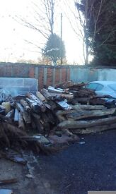 Big lot of oak wood free to collect today
