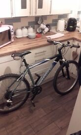 Retro classic Dawes Tamarak mountain bike