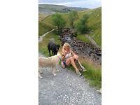 Dog walking with linda